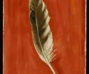 Feather, Great Spruce Head Island